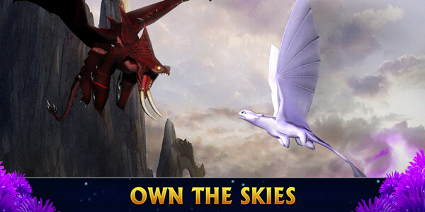 Own the Skies Banner
