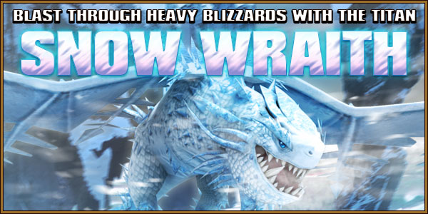Titan SnowWraith Dragons Banner