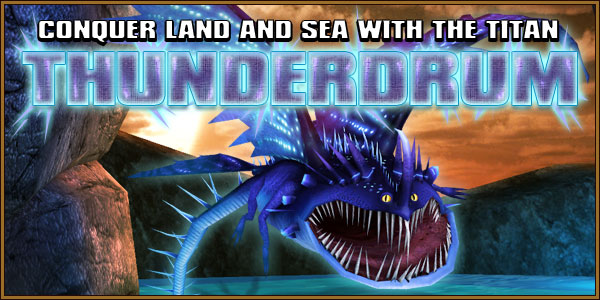 Thunderdrum Dragons Banner